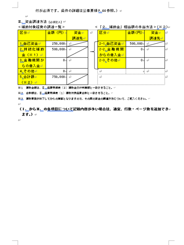 補助事業計画書05